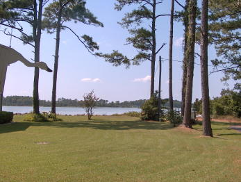 WATER VIEW RES. LOT Price Reduced (0)
